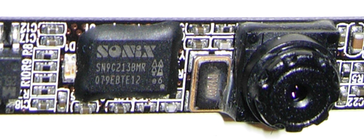 Camellia CN0314-M102